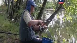 Wędkarstwo Amur karp leszcz karaś thumbnail