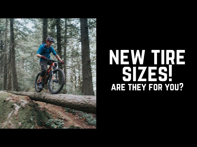 New WTB 2.6 tires- first look!