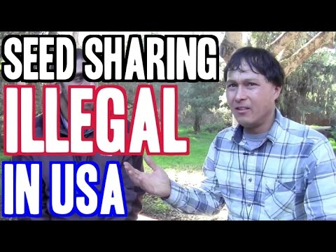 Seed Sharing Deemed Illegal in the United States