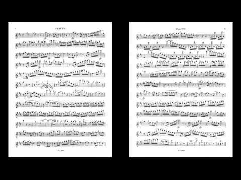 Mozart Flute Concerto in D K.314 I. Allegro aperto (Piano Accompaniment)