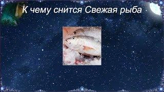 К чему снится Свежая рыба (Сонник)