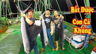 Gambar cover Cá Khủng Mắc Vào Chài Bắt Được 3 Con Anh Em Sung Sướng Quá Trời - Sea Fishing # 132
