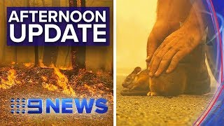 NSW Bushfires: Multiple emergency level fires burn | Nine News Australia