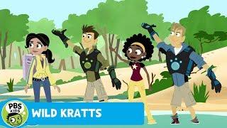 Wild Kratts: Pony Toes thumbnail