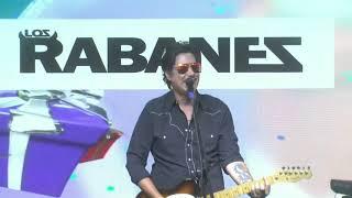 Los Rabanes - Mi burrito Sabanero (En vivo Fiesta fin del 2020)