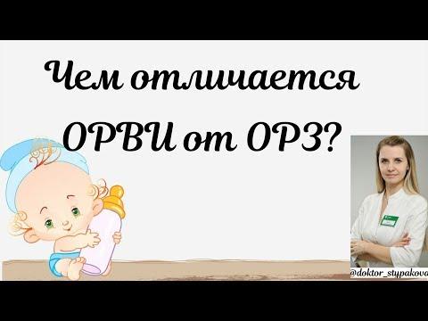 Чем отличается ОРВИ от ОРЗ у детей?
