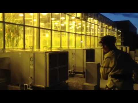 Experimental Farm Capital Velofest