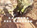 Video de Jose Sixto Verduzco