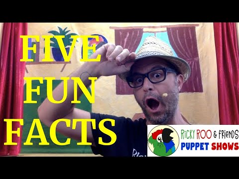 5 Fun Facts Virtual Zoom Birthday Party Kid S Zoom Birthday Virtual Puppet Show Youtube