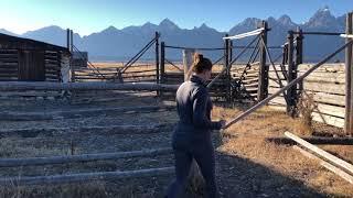 Mormon row. Grand Teton National Park