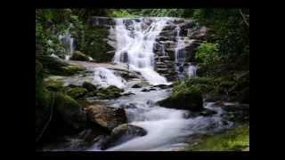 Goura Vrindavana - vídeo completo