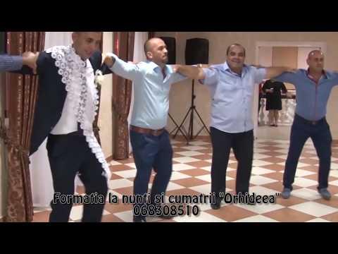 Formatia La Nunti Si Cumatrii Orhideea 068308510 скачать видео
