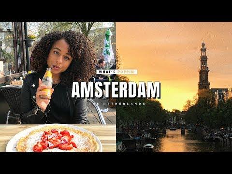 WOW air travel guide application | Amsterdam, vertical video