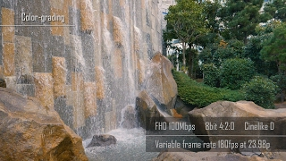 Panasonic GH5 | Variable Frame Rate - 96fps, 120fps, 180fps quality comparison