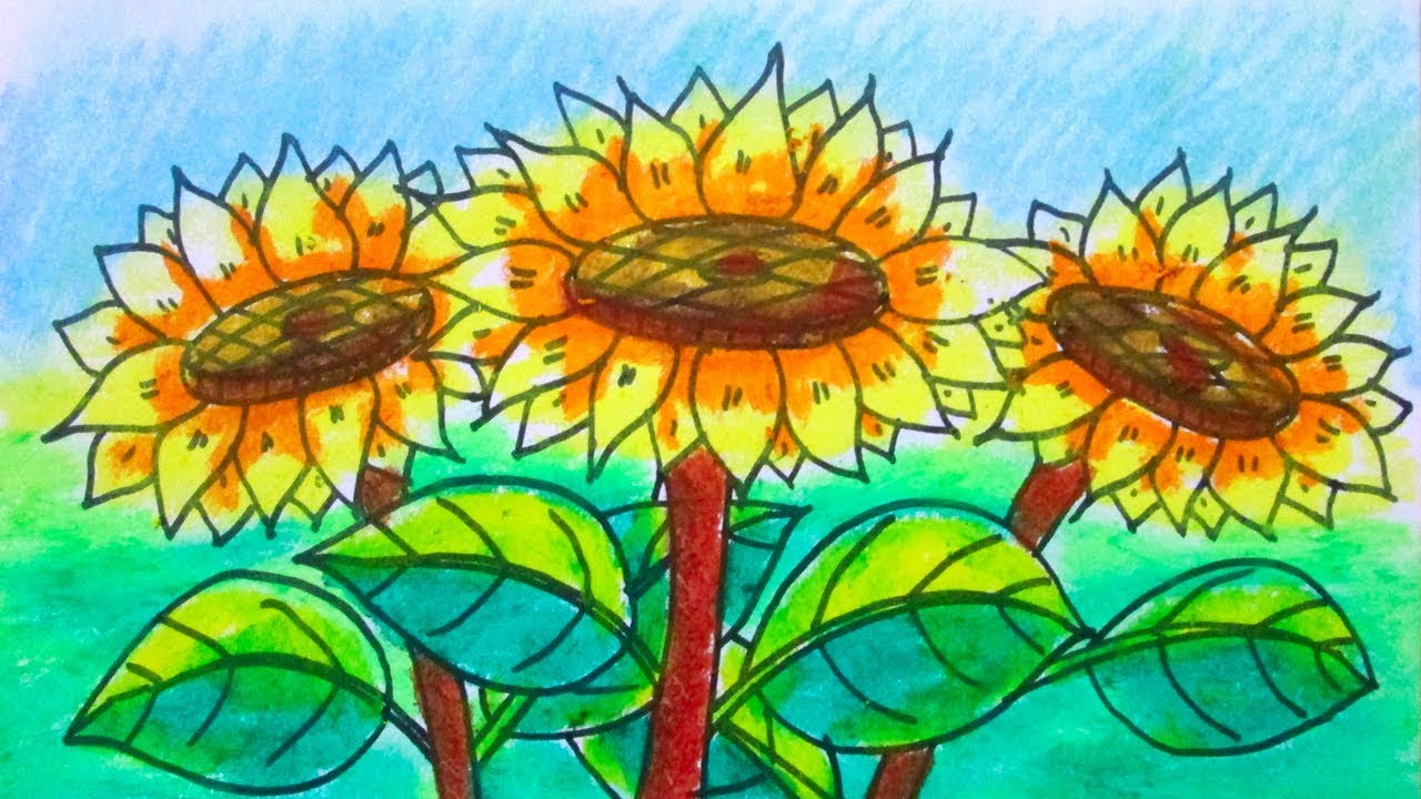 How to draw a scenery of sunflower- flower garden- Kids drawing tutorial #1