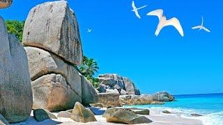 Seychelles - Coco island 2017 4K White sand beach, rocks, birds, snorkeling. Сейшелы и остров Коко.
