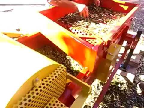 Video cernitrice defogliatrice per olive Pappadà Toscana 65 185 elettrica