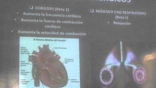 Sistema Nervioso Adrenergicos y Agonistas adrenergicos