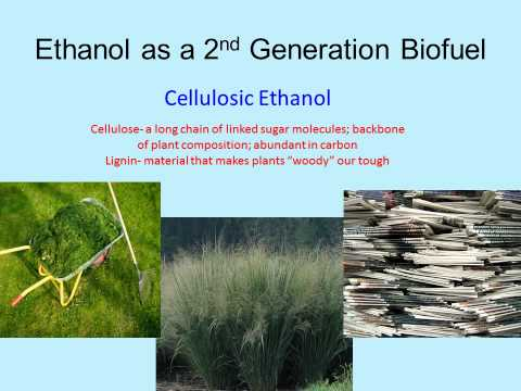 Biofuel/Biomass: Making Ethanol from Crops