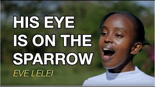 Gambar cover His eye is on the sparrow  - Eve Lelei