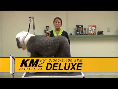Grooming an Old English Sheepdog using a Wahl Bravura Lithium Ion and KM2 Deluxe with Sue Zecco