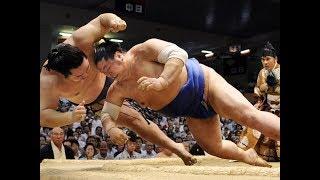 В схватке сумоистов серьезно пострадал судья.