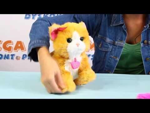 furreal gogo cagnolino interattivo | Doovi