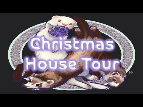 Christmas Ferret Cam & House Tour