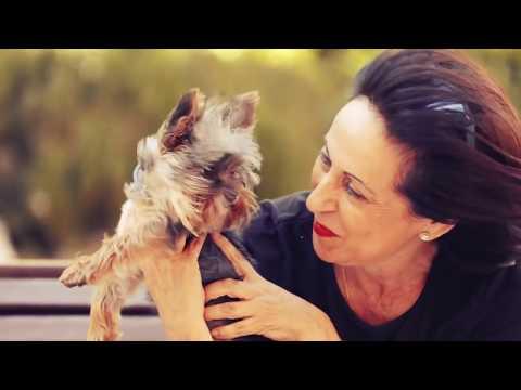 Amos y Mascotas: Margarita Robles y su perrita justiciera