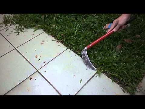 RM6 00 SICKLE CUTTING GRASS