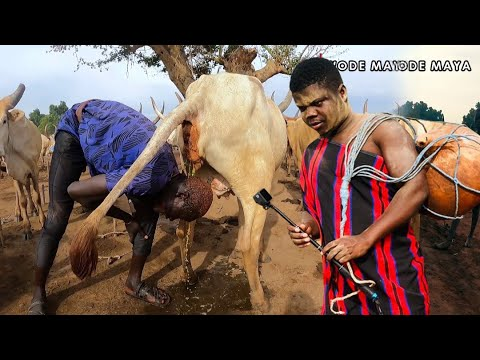 The Remarkable Mundari Tribe Of South Sudan Showers with Cow Urine?