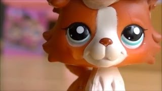 ♥ LPS Troublemaker - Episode 7 (The Truth) ♥