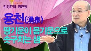 용천(湧泉) - 땅기운이 몸기운으로 솟는 생명의 샘 [김경현의 침한방] 선재한의원