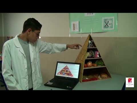 Food Pyramid. Project presented for the science fair. IMSSG, Cairo, Egypt