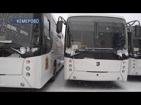 Новые автобусы пополнили автопарки пассажирских автопредприятий области, в том числе и Белова