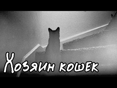 Хозяин кошек (Страшная История)