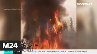 Смотреть видео Другие новости России и мира за 7 августа - Москва 24 онлайн
