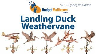 Budgetmailboxes.com | Good Directions 9605p Landing Duck Weathervane - Polished Copper