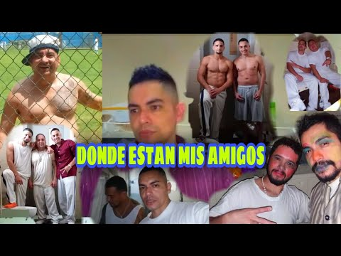 EL CHEF PITIRIJA Y EL CUBA, DONDE ESTAN? Y TODOS MIS COMPAÑEROS