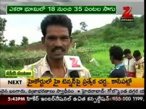 Centre for People's Forestry - Sustainable agriculture (ZEE24G)