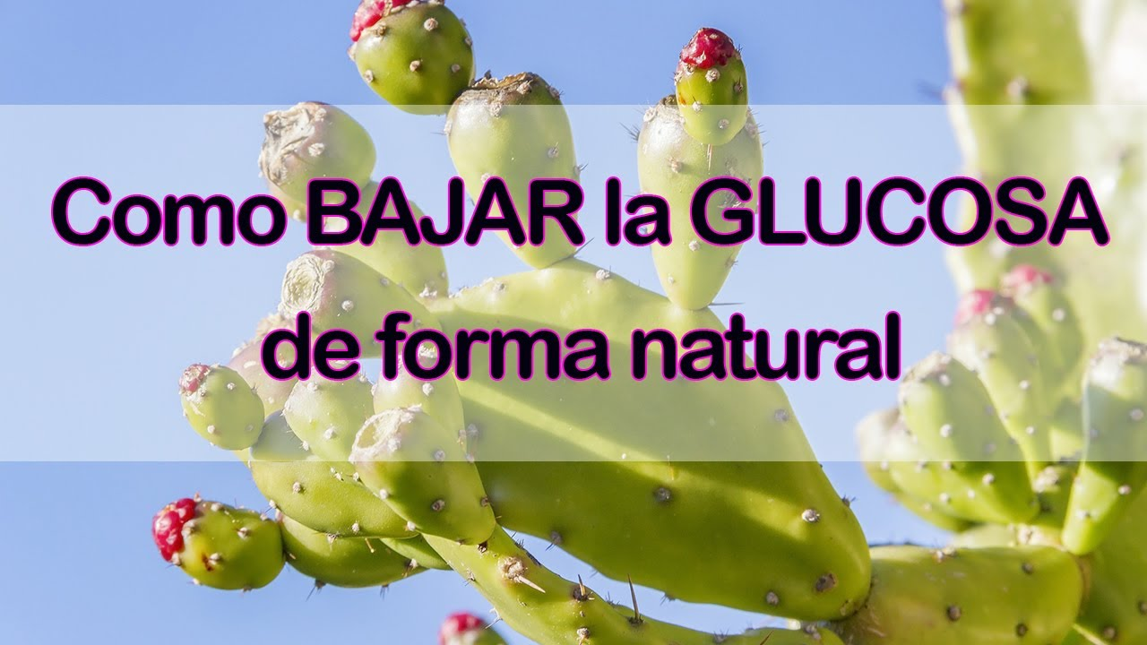 Como BAJAR la GLUCOSA de forma natural - YouTube