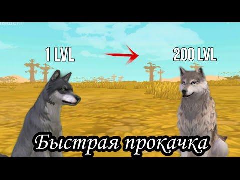 ~Как быстро прокачатся в игре WildCraft~Немножко полезных видео~LisaGame~