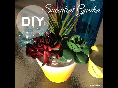 Dollar Tree DIY | SUCCULENT GARDEN