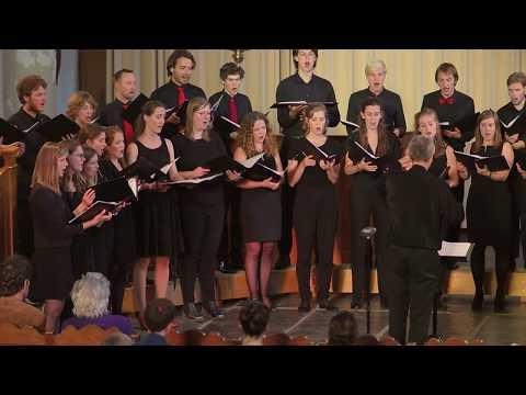 Go, Lovely Rose - Eric Whitacre | USCantorij o.l.v. Fokko Oldenhuis