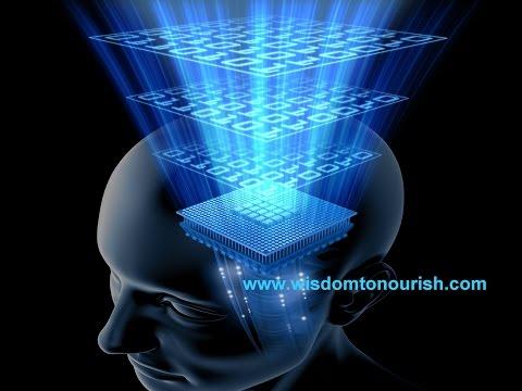 mind and matrix