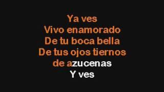 Luis Miguel Te Necesito Karaoke