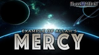 Example Of Allah's Mercy | Powerful Hadith