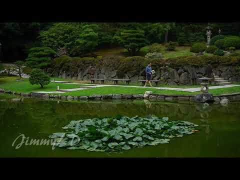Seattle Japanese  Garden, 日本花园, 132 photos compilation
