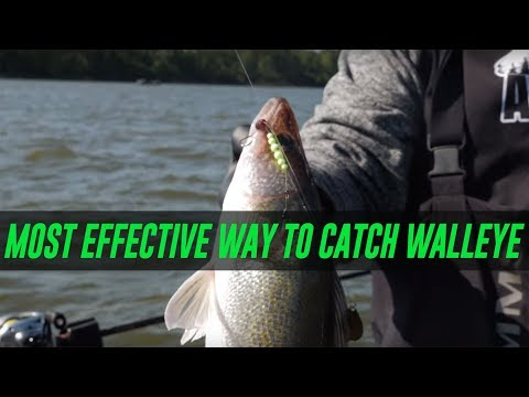 The Most EFFECTIVE Way To Catch WALLEYE. (EASY How To!!)