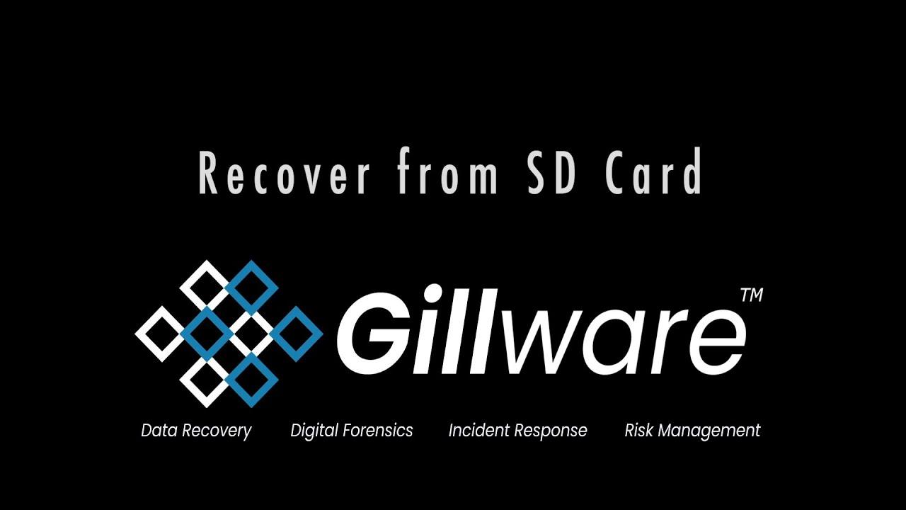 SD Card/Micro SD Card Recovery Service: Repair SD Card